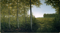 Hand painted Indiana Woodlot mural